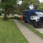 Houston tree chipping
