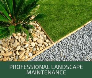 Professional Landscape Maintenance | CVL Complete Tree Service