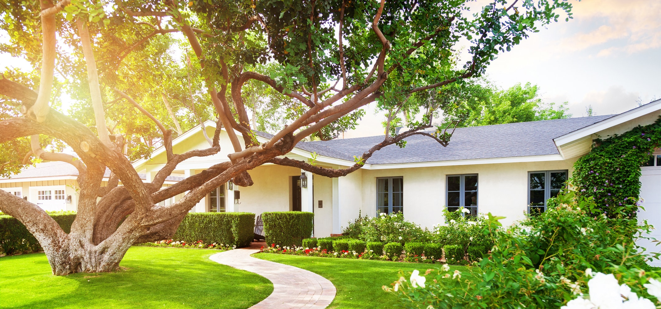 Spring-Tree-and-Yard-Care-Tips